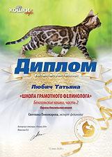 Вебинар 05 13 9 кошки 26 Любич Татьяна.j