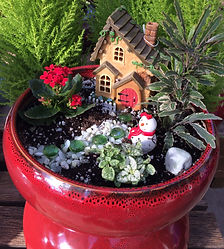 winter-fairy-garden-1-e1478981488519.jpg