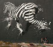 zebra Miami_main Wynwood 1mb.jpg