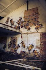1 Bees Warehouse_M.jpg