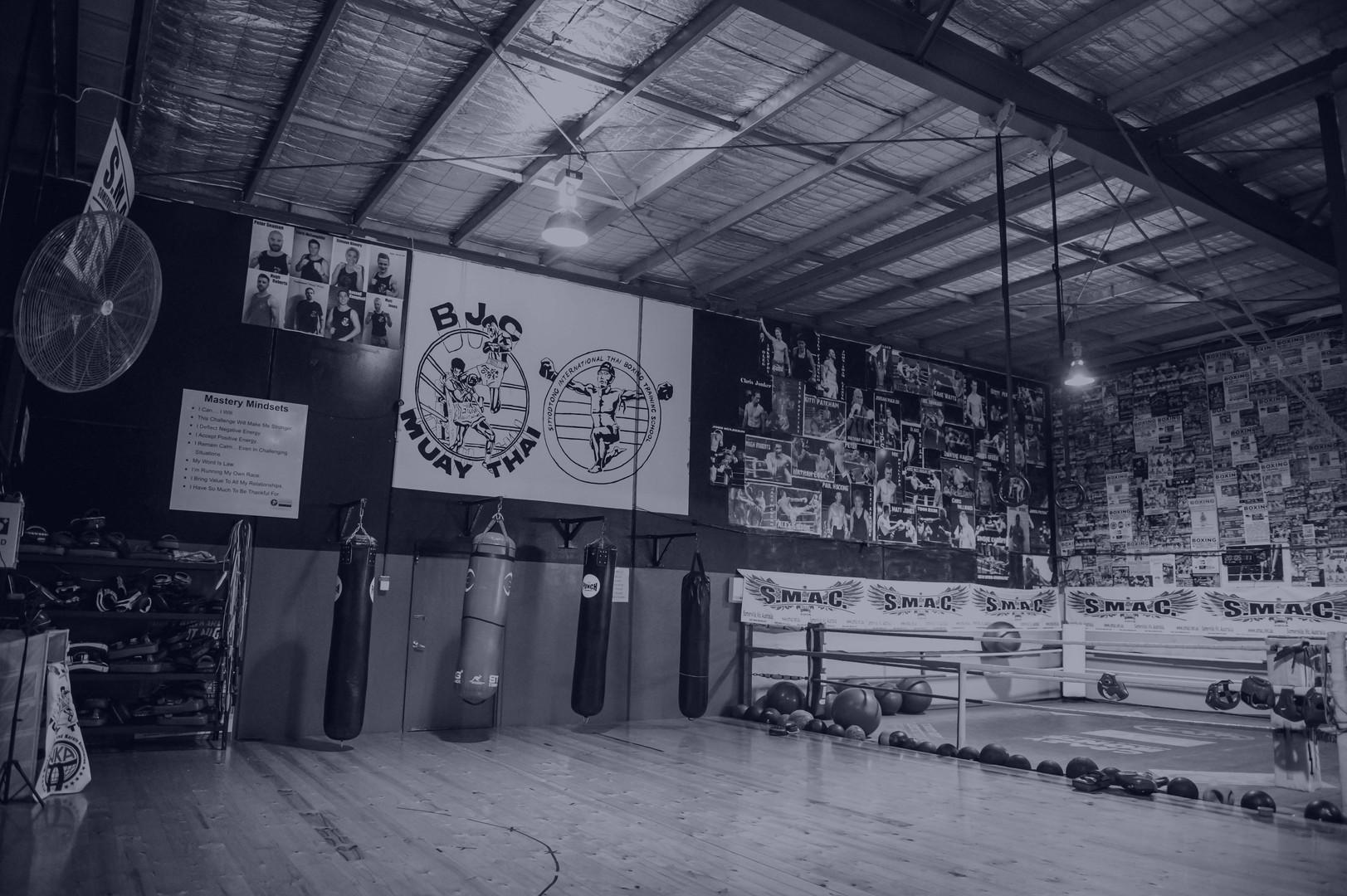 Gym pic blue grayscale.jpg
