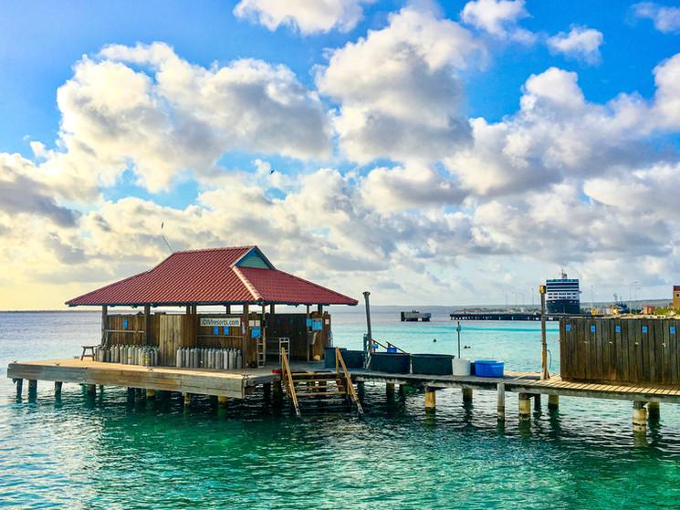 Bonaire-2019-Derrick-Edwards-E2330.jpg