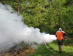 Mosquito Control Fogger In the New Caneyarea. Mosquito Control consists of treating Residential Homes, Neighborhoods, HOA's, Streets,Wooded Trails, Storm drains, Swamps, Gardens, Commercial Establishments and others