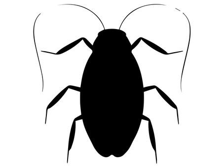 5 Common Texas Pests In Spring