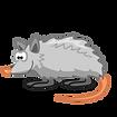 opossum_1.png