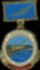 Нагрудные медали