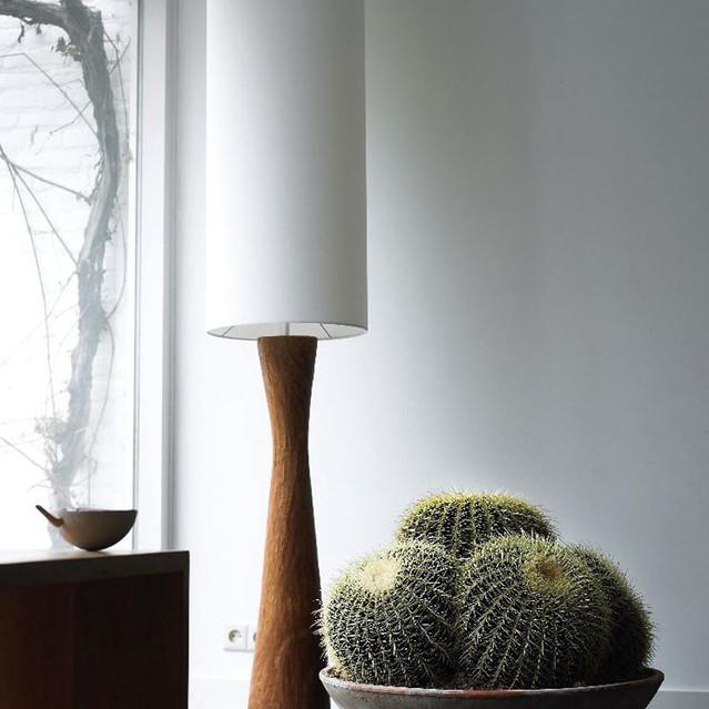 Echinocactus_grusonii__0000_011924.jpg