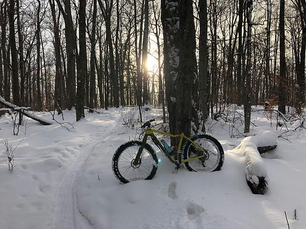 sun bike (2).jpg
