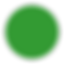 Ski_trail_rating_symbol-green_circle.svg