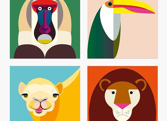 ♡ Vier Magnete von Studio Roof ( Affe, Kamel, Tucan, Löwe)