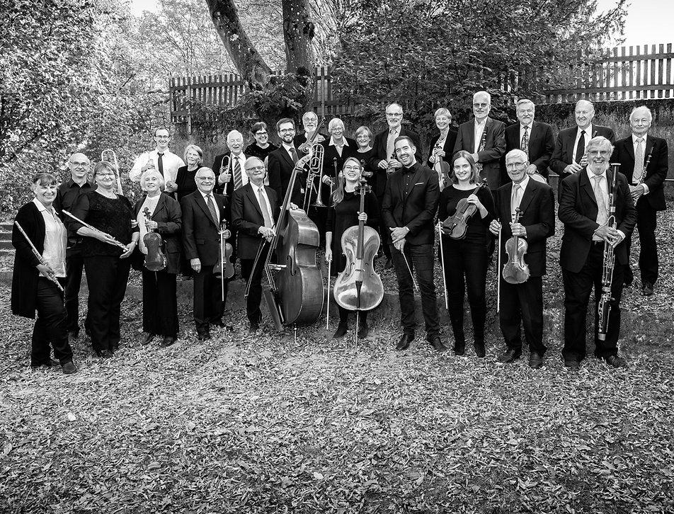 SW_Orchester_Sonnenberg Sinfonietta.jpg