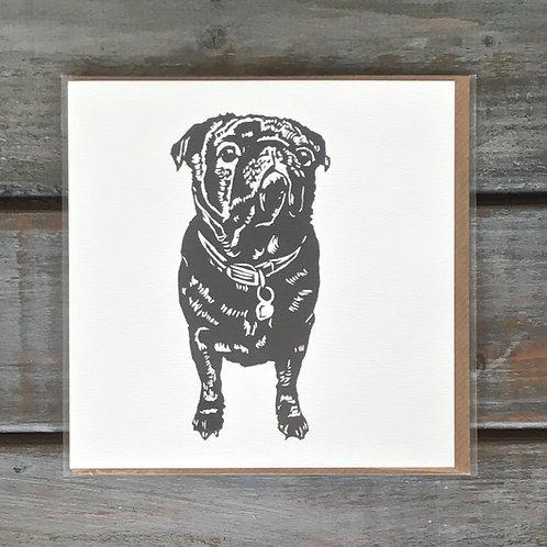 Milo the Pug Card