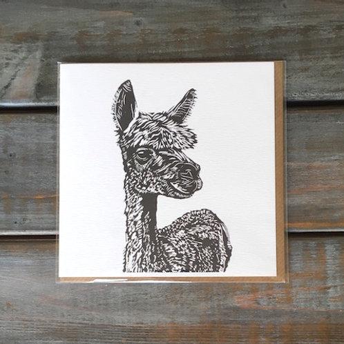 'Finn the Alpaca' Card