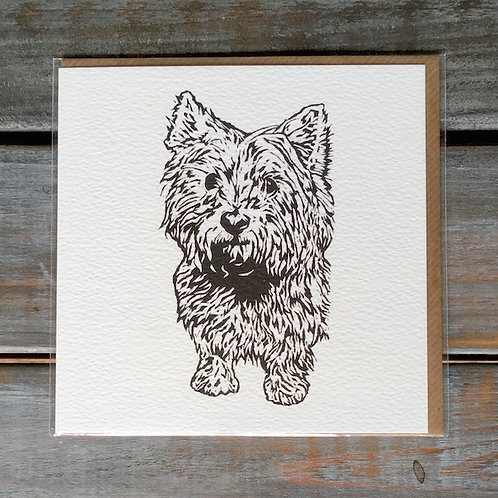 'Betty the Westie / Cairn Terrier' Card