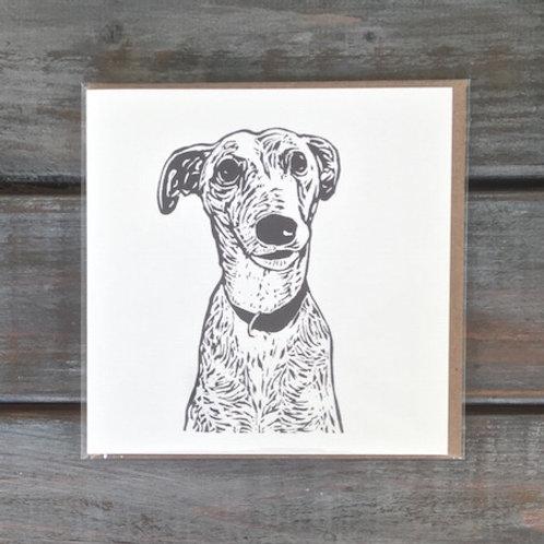 Pheonix the Greyhound Card