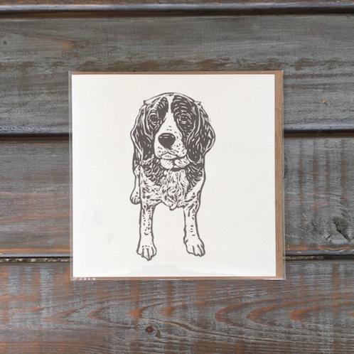 Daisy the Beagle Card