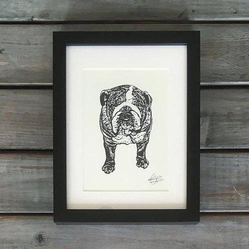 'Arthur the English Bulldog' Lino Print