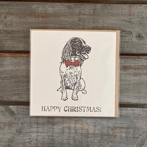 Poppy the Springer Spaniel Christmas Card