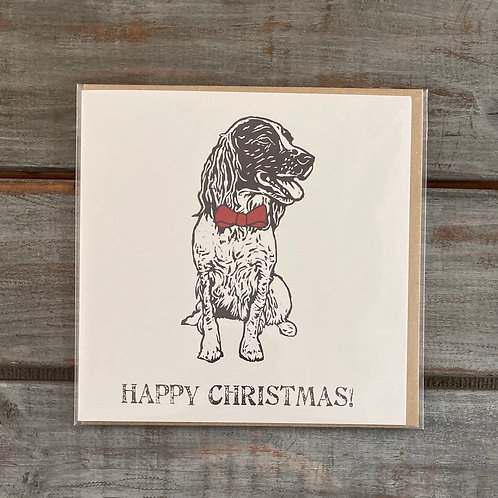 Poppy the Springer Spaniel Christmas Card Set