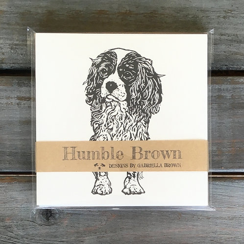 Jasper the Cavalier King Charles Spaniel Card Set