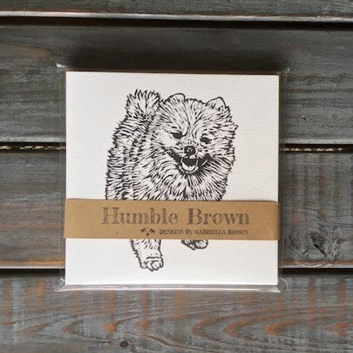 Wally the Pomeranian Card Set