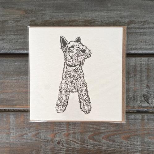 Max the Fox Terrier Card