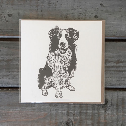 Ollie the Border Collie Card