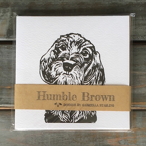 'Digby the Wire Haired Dachshund' Card Set
