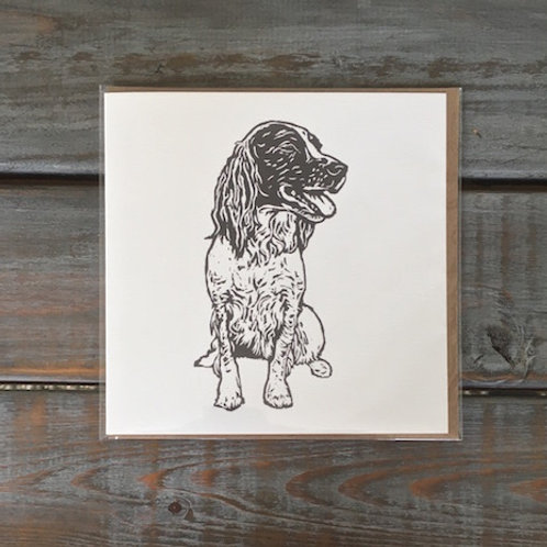 Poppy the Springer Spaniel Card