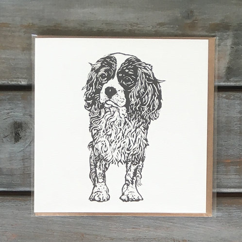 Jasper the Cavalier King Charles Spaniel Card