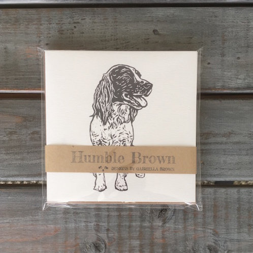 Poppy the Springer Spaniel Card Set