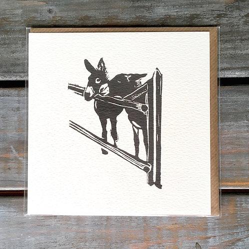 'Donkeys' Card Set