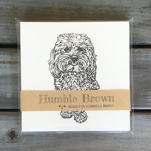 Alpha the Cavapoo Card Set