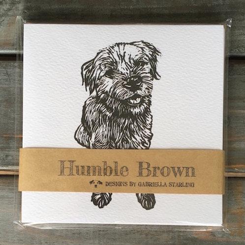 'Boson the Border Terrier' Card Set