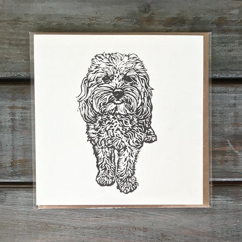 Alpha the Cavapoo Card
