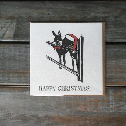 Donkeys Christmas Card