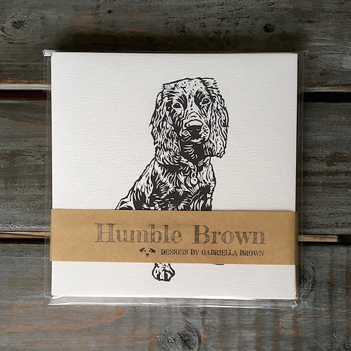 'Percy the Working Cocker Spaniel' Card Set