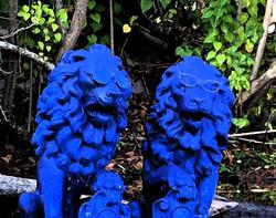 Dé_kanmarad_blue