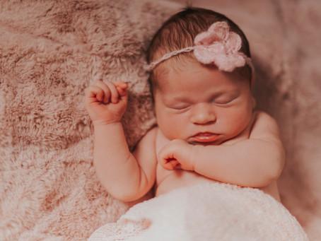 Newborn baby evie