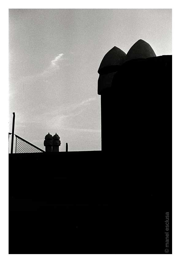Gaudí VI-1979