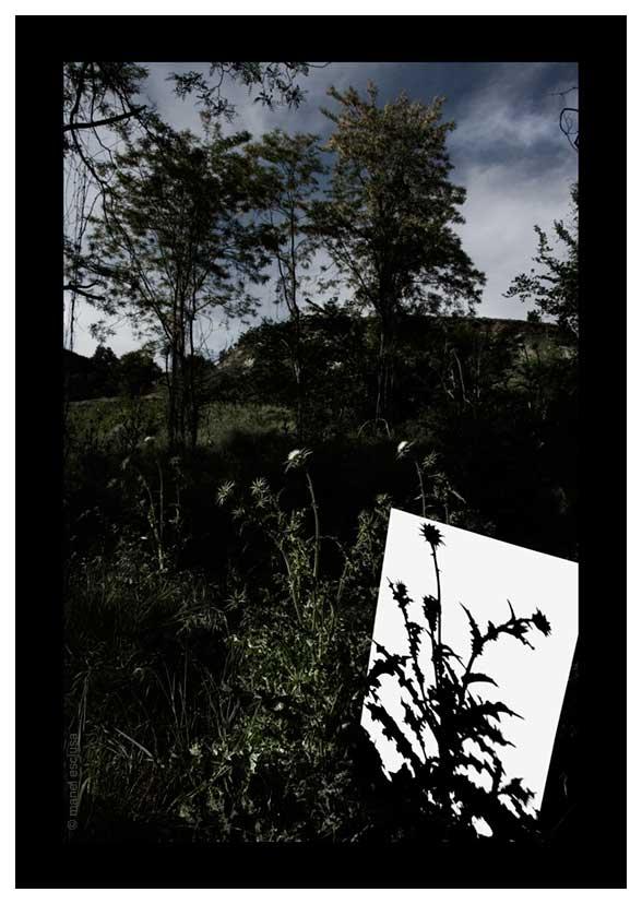 Sota l´ombra de miralls foscos-2006
