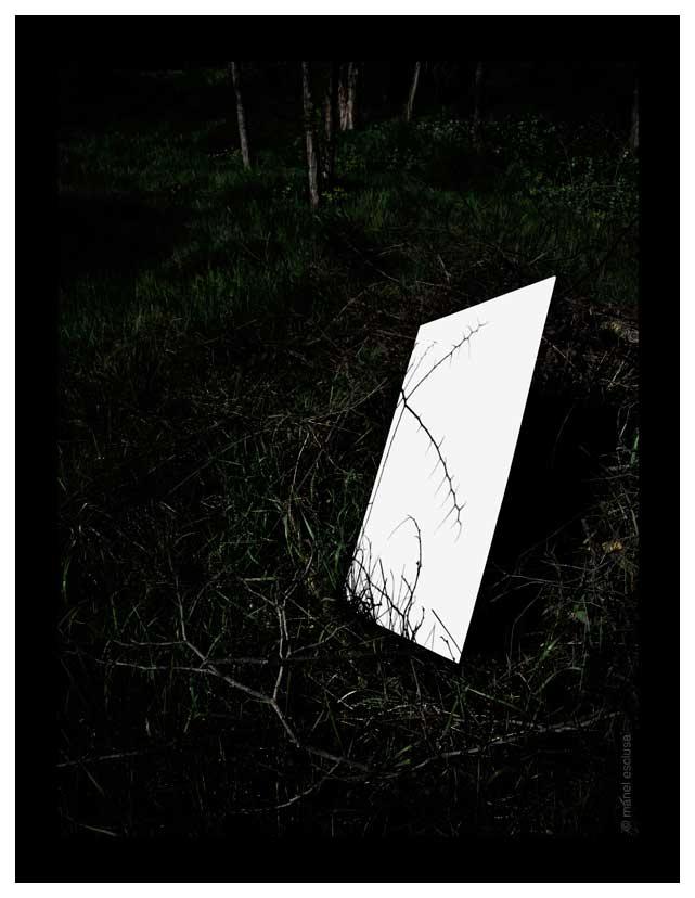Ombra d´espines - 2006