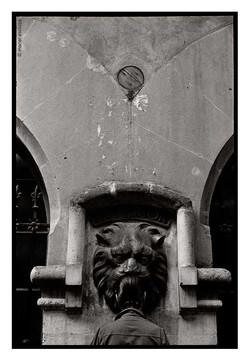La veu del lleó-1978