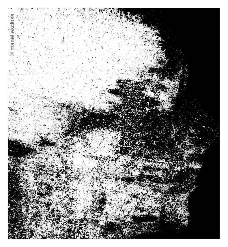 Núvols obscurs II