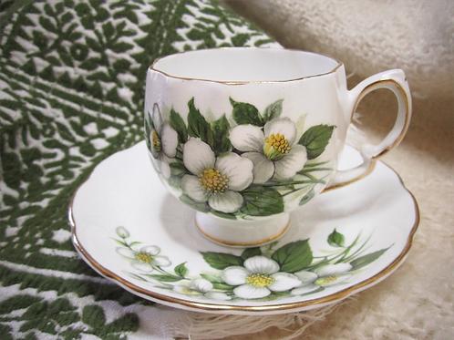 """Ensemble de 4 tasses & soucoupes en porcelaine COLCLOUGH """"Fleurs d'oranger"""""""