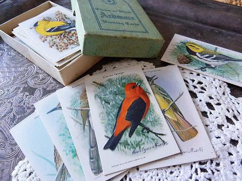 Collection de 30 cartes 'Useful Birds of America' - Séries 9 & 10 - Litho Canada