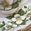 """Thumbnail: Ensemble de 4 tasses & soucoupes en porcelaine COLCLOUGH """"Fleurs d'oranger"""""""
