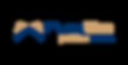 logo-FlexSim.png