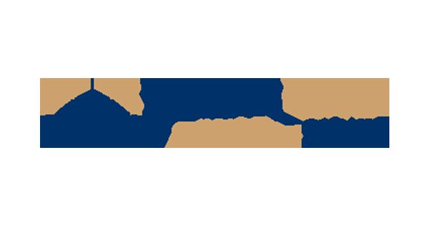 FlexSim