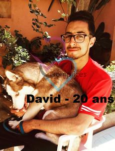 David 20.jpg